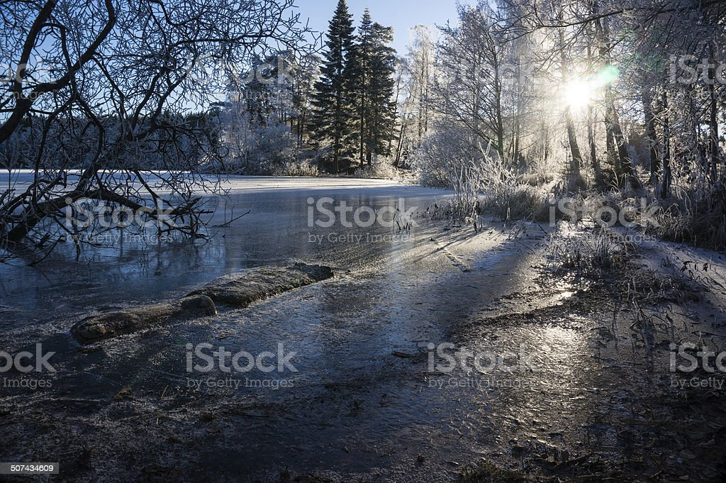 Ice conditions with sun in Norwegian forest royalty-free stock photo