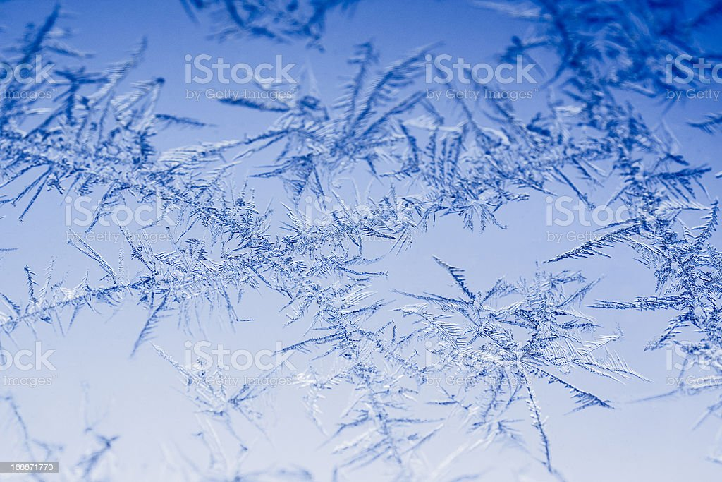 Ice crystal in winter royalty-free stock photo