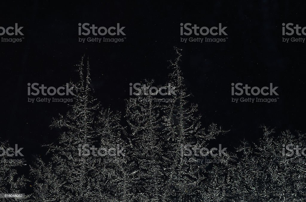 ice crystals like forest at night stock photo
