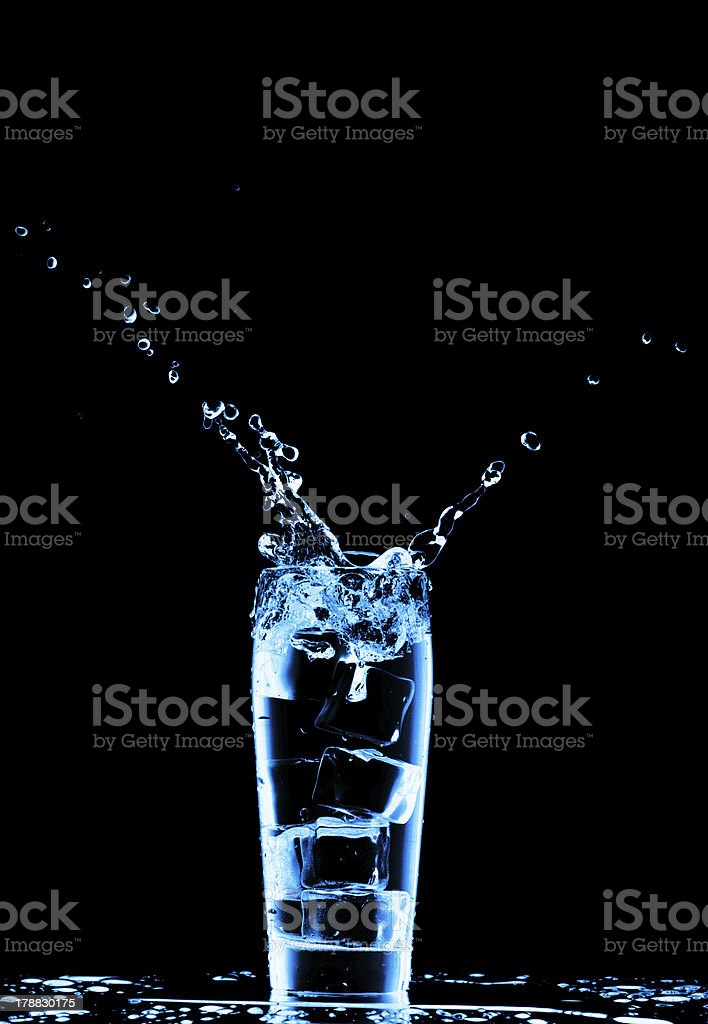 Ice cubes in the glass of water royalty-free stock photo