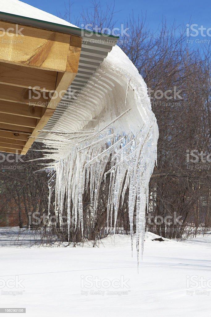 Ice Fantasy royalty-free stock photo