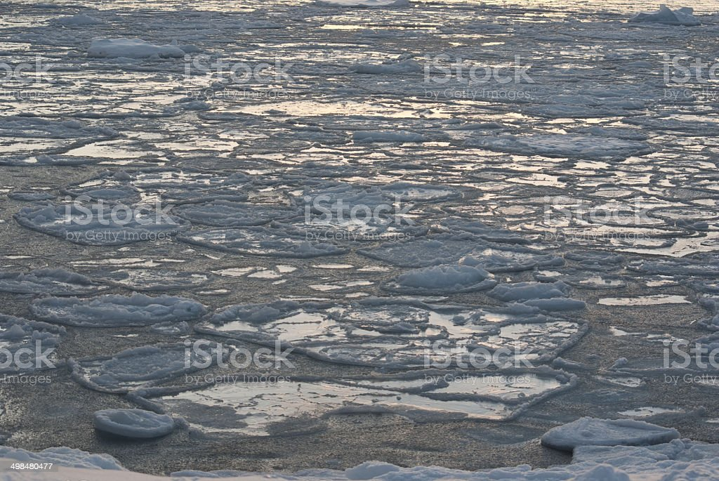 Ice field in the waters of Antarctica. stock photo