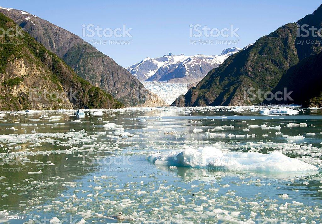 Ice Field near Sawyer Glacier stock photo
