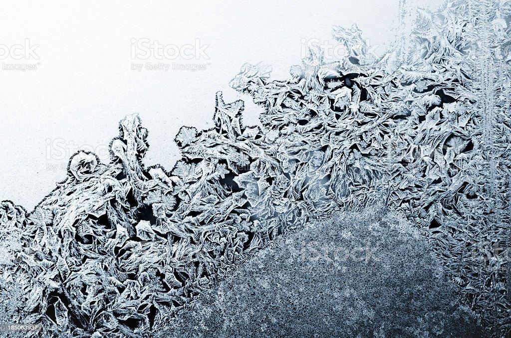 ice flowers royalty-free stock photo