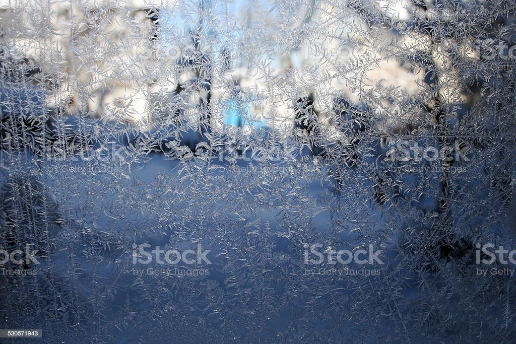 ice flowers stock photo