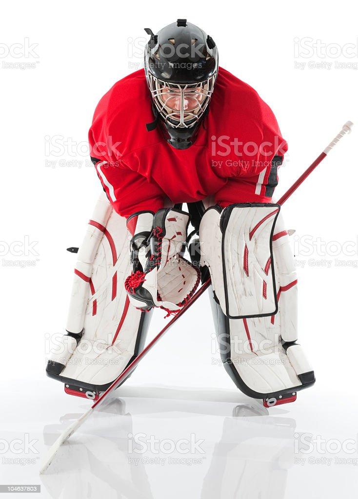 Ice hockey goalie posing in full gear stock photo