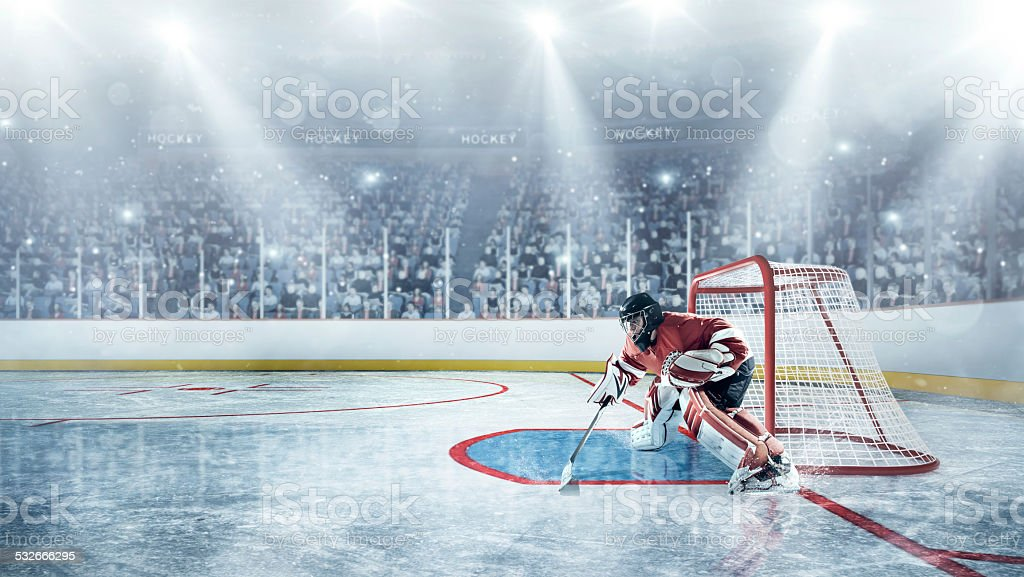 View of professional ice hockey player during game in indoor arena...