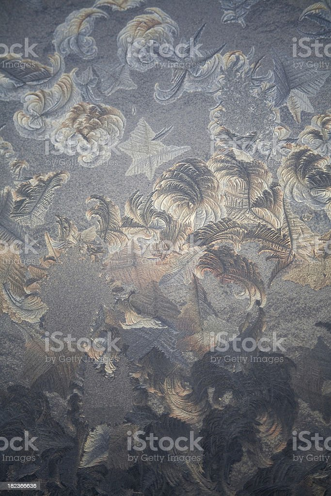 Ice leaves royalty-free stock photo
