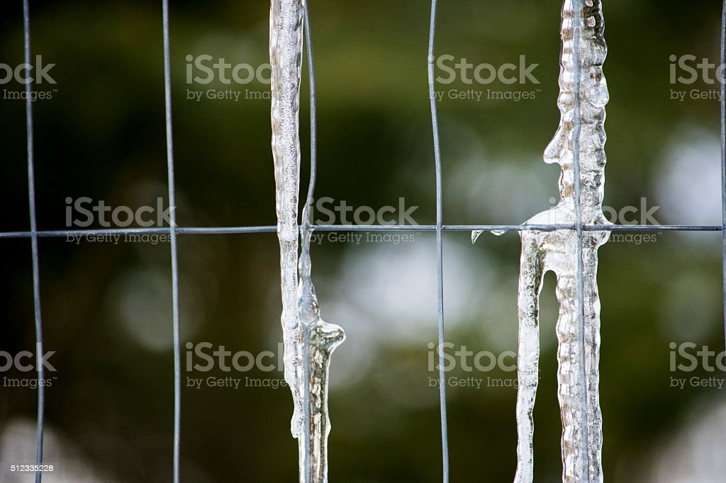 Ice on wire fence royalty-free stock photo