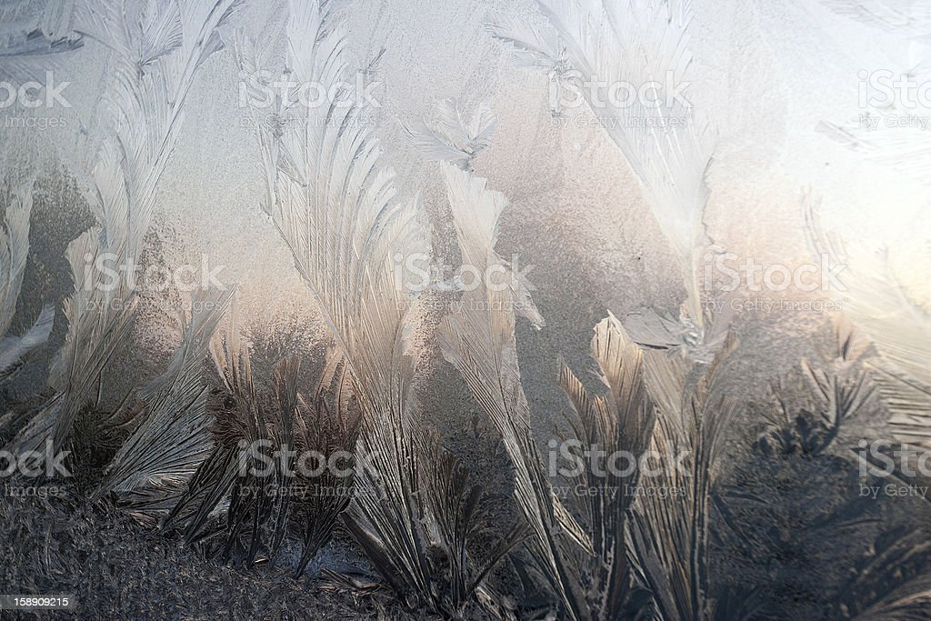 ice patterns on winter glass royalty-free stock photo