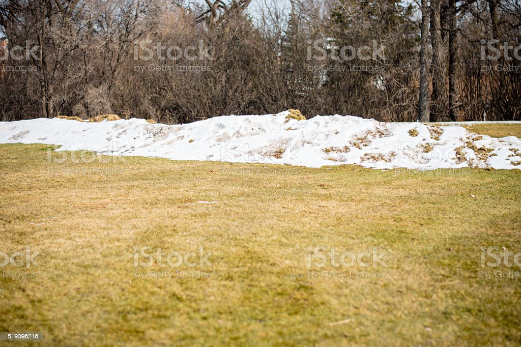 ice pile in park thaw stock photo