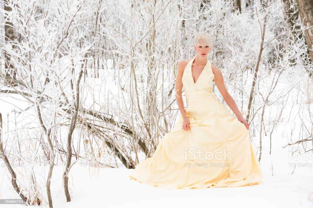 Ice Princess in the Snow stock photo