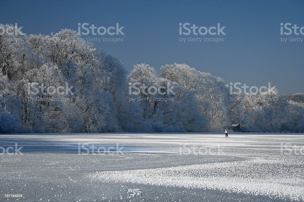 Ice Skater and Hoarfrosted Trees stock photo
