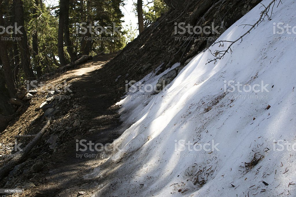 Ice Spotted Trail stock photo