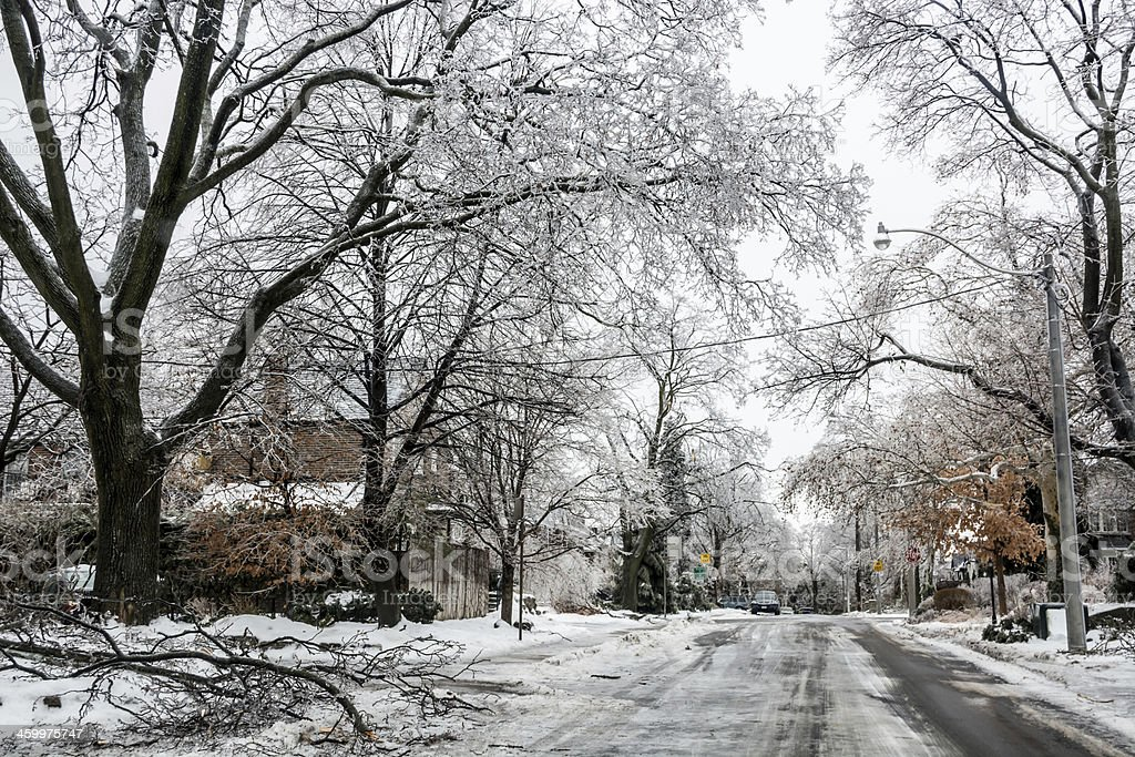 Ice Storm 2013 Toronto Damage stock photo