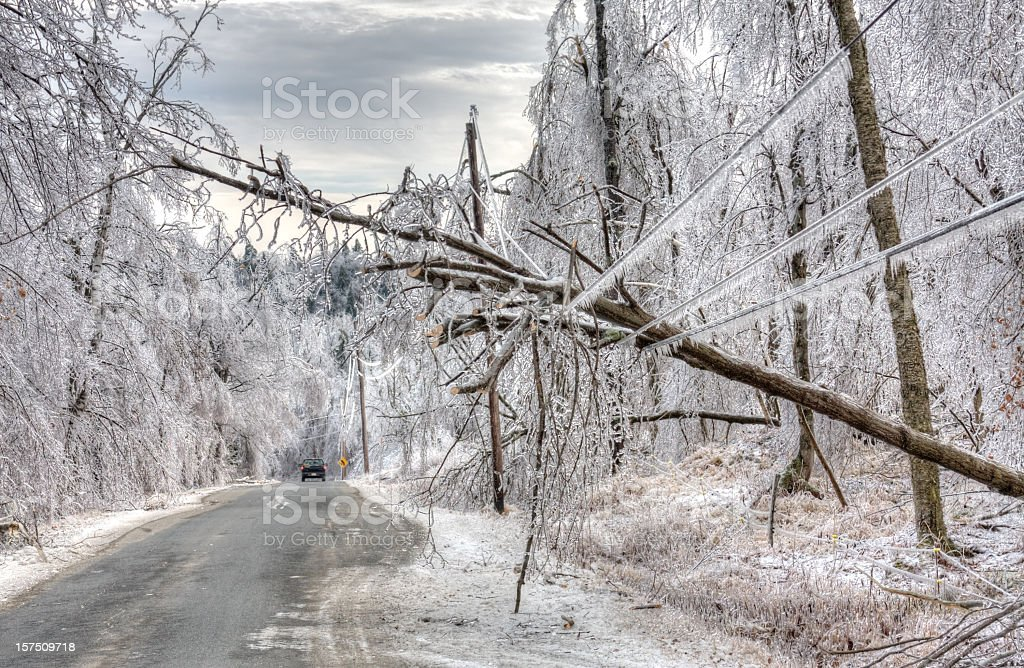 Ice Storm Damage stock photo