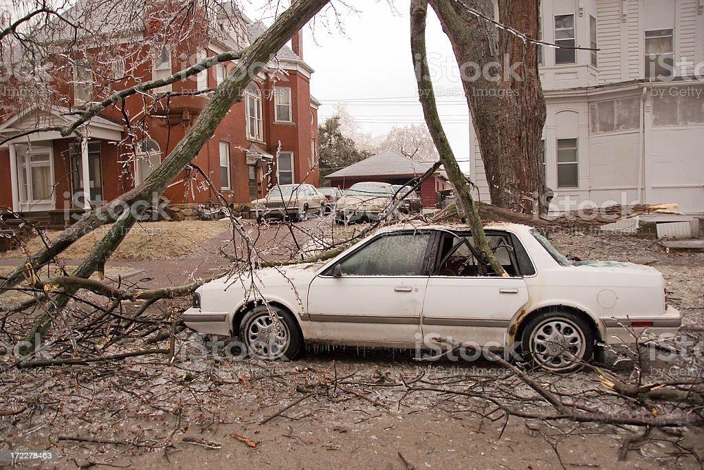 Ice Storm Damage royalty-free stock photo