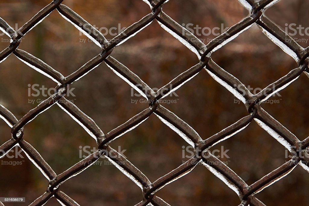 ice the wire grid royalty-free stock photo