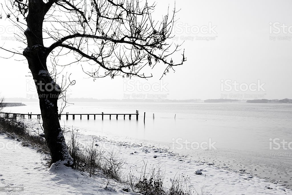 Ice Winter royalty-free stock photo