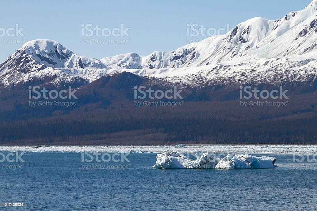 Iceberg Floating in Sea Close to Hubbard Glacier in Alaska stock photo