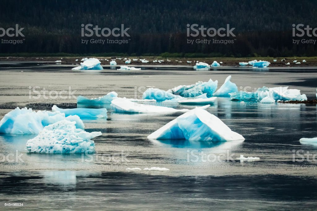 Iceberg in Tracy Arm stock photo