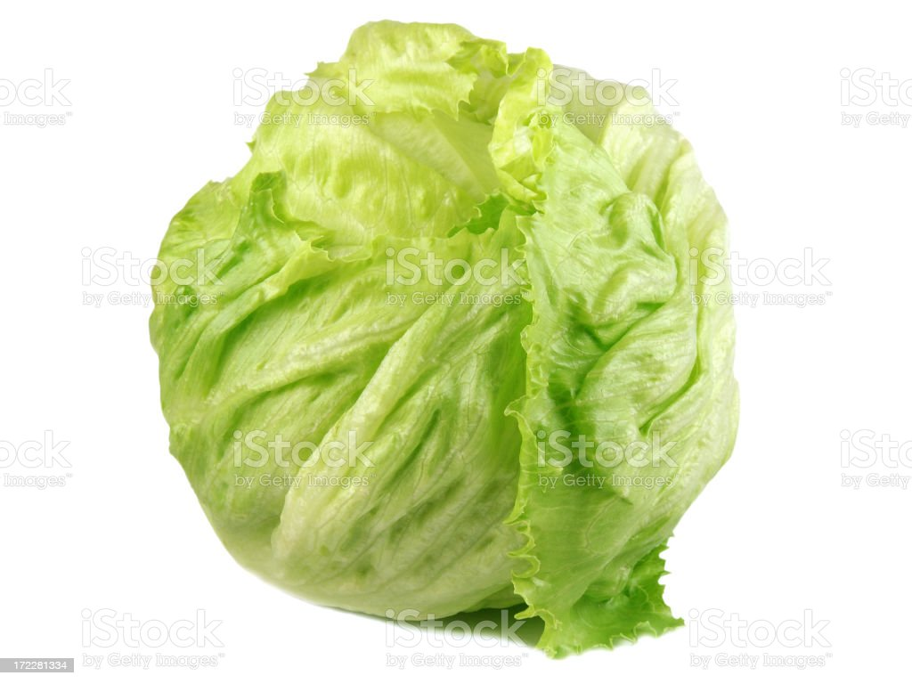 Iceberg lettuce royalty-free stock photo
