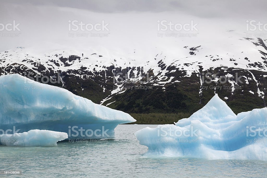 Icebergs and Mountains stock photo
