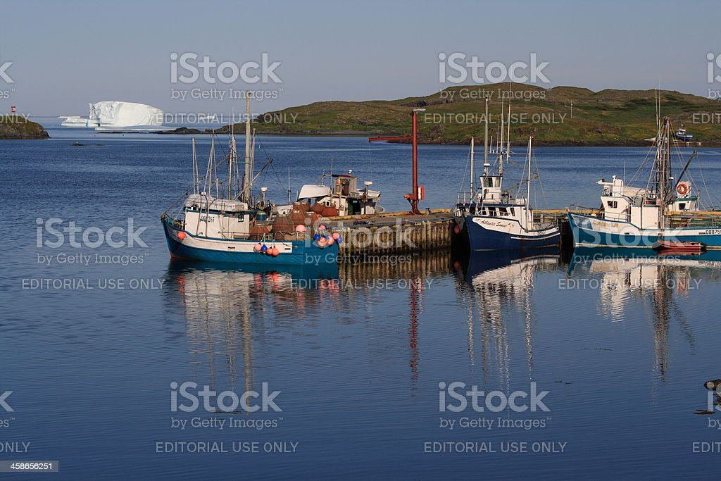 Icebergs at Goose Cove Harbour stock photo