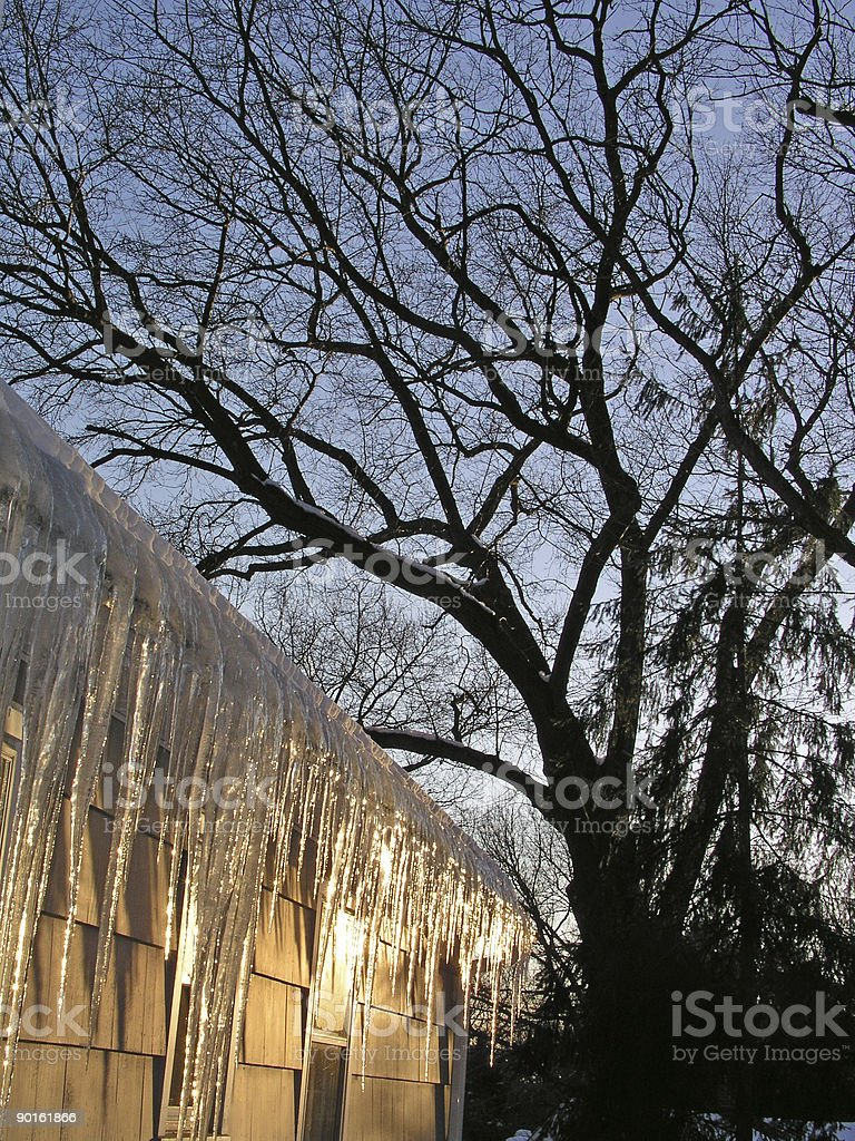 Icecles in Winter royalty-free stock photo