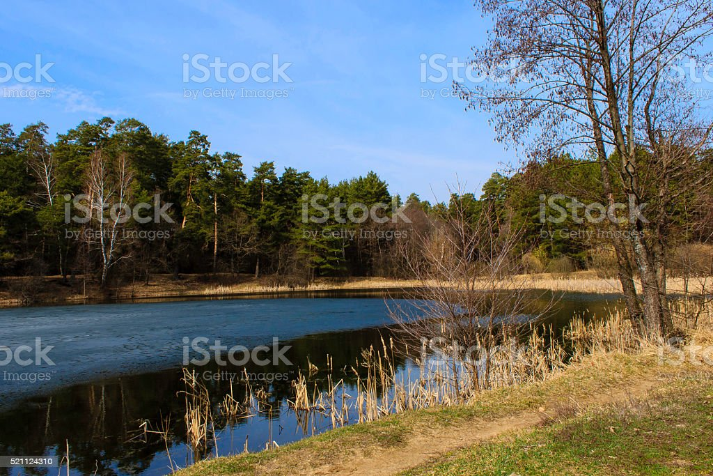 ice-covered pond stock photo