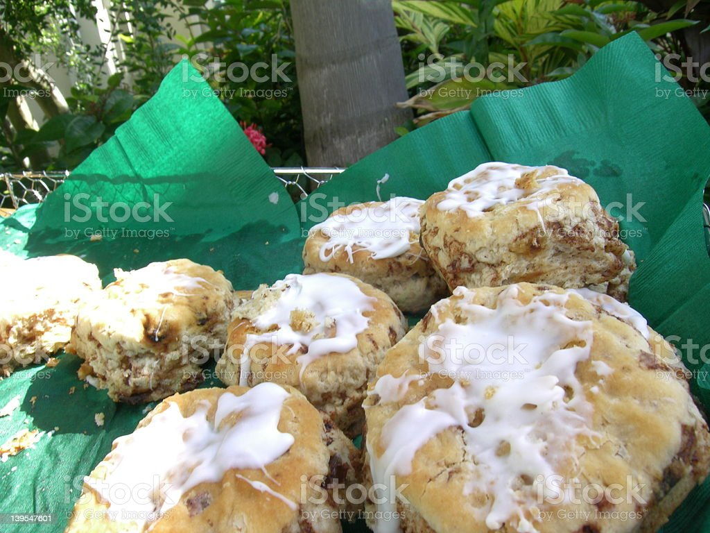 Iced Biscuts royalty-free stock photo