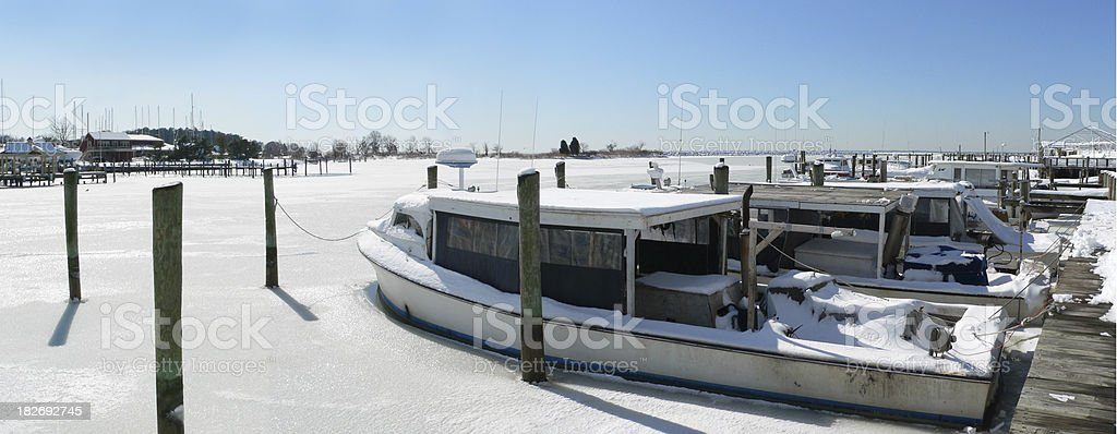 Iced In royalty-free stock photo