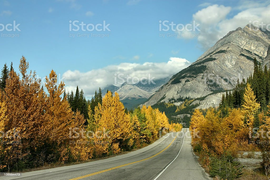 Icefield Parkway royalty-free stock photo