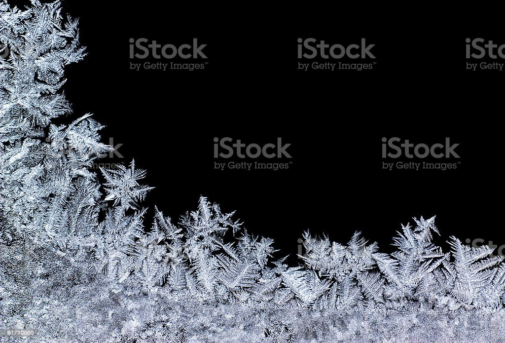 iceflower stock photo