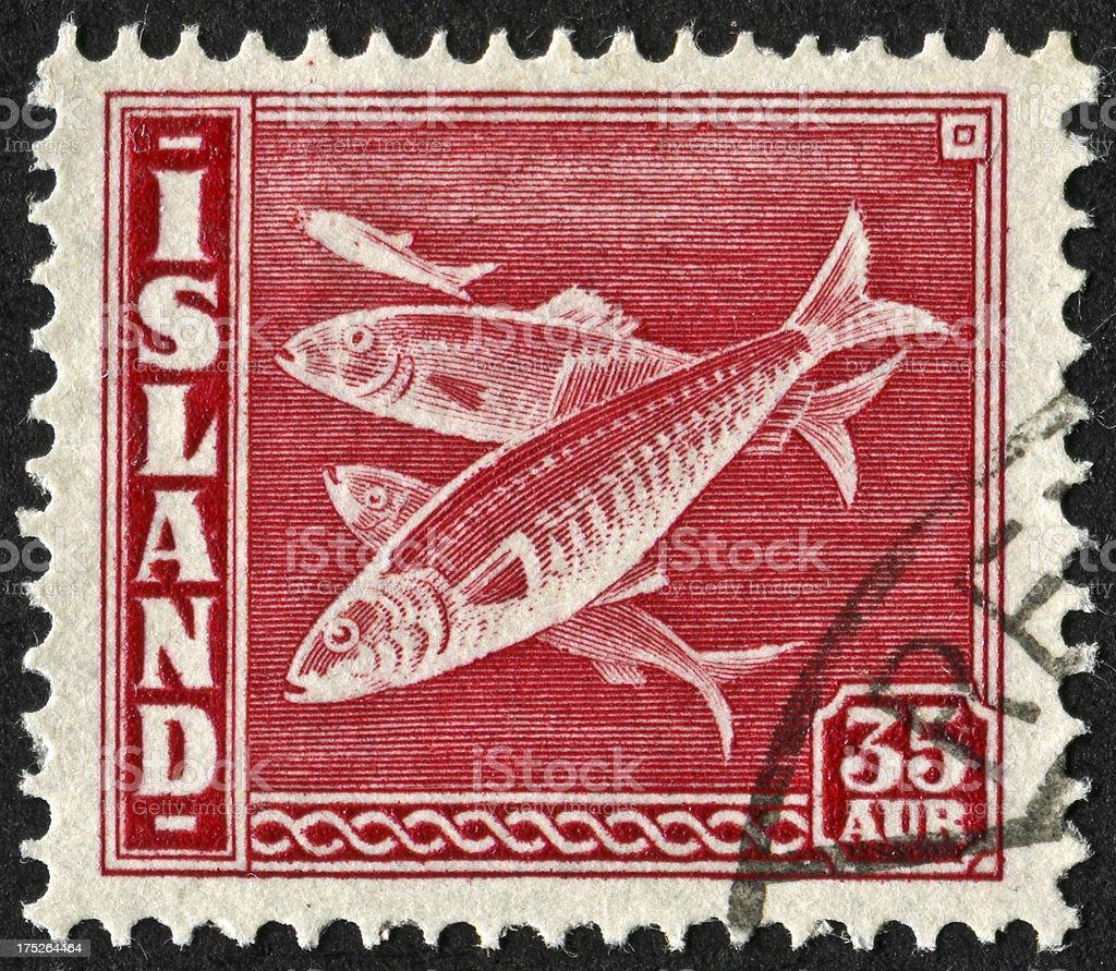 Iceland Fish Stamp royalty-free stock photo