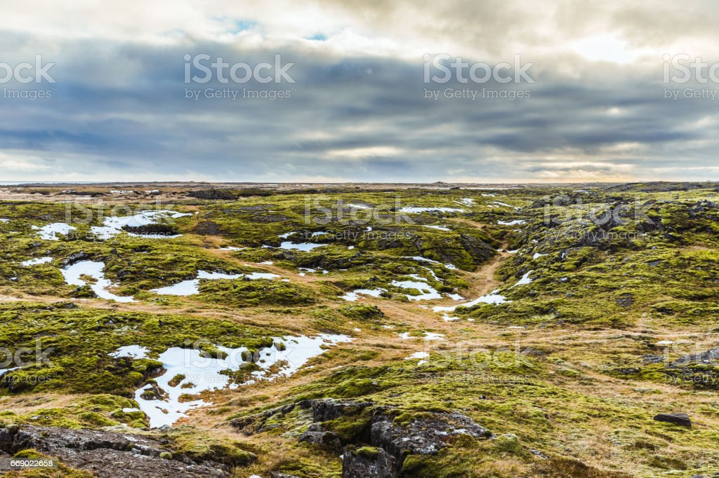 Iceland landscape: rocks, moss and snow stock photo