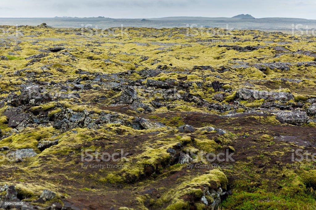 Icelandic Dormant Volcanic Lava Fields stock photo