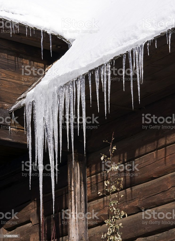 icicles at early morning royalty-free stock photo