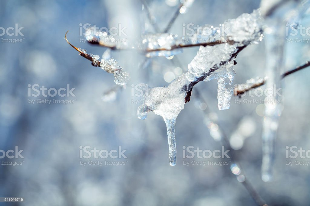 Icicles on the iced over branches of a tree stock photo