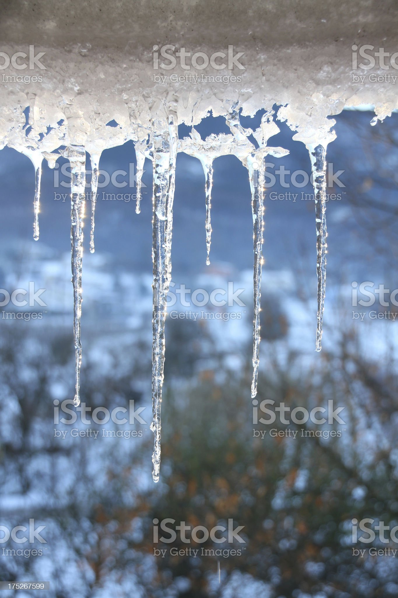 icicles vertical royalty-free stock photo