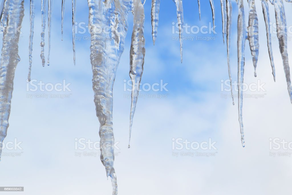 Icicles.Background of blue sky in the spring. stock photo