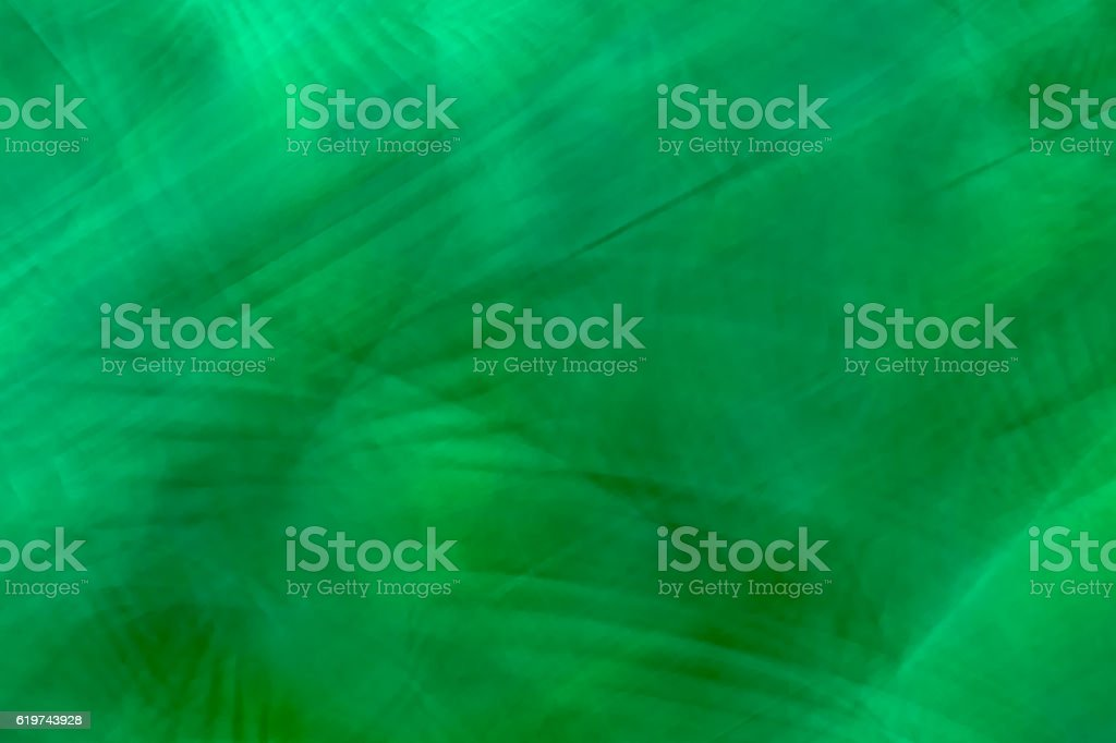 Icm-Green jungle stock photo