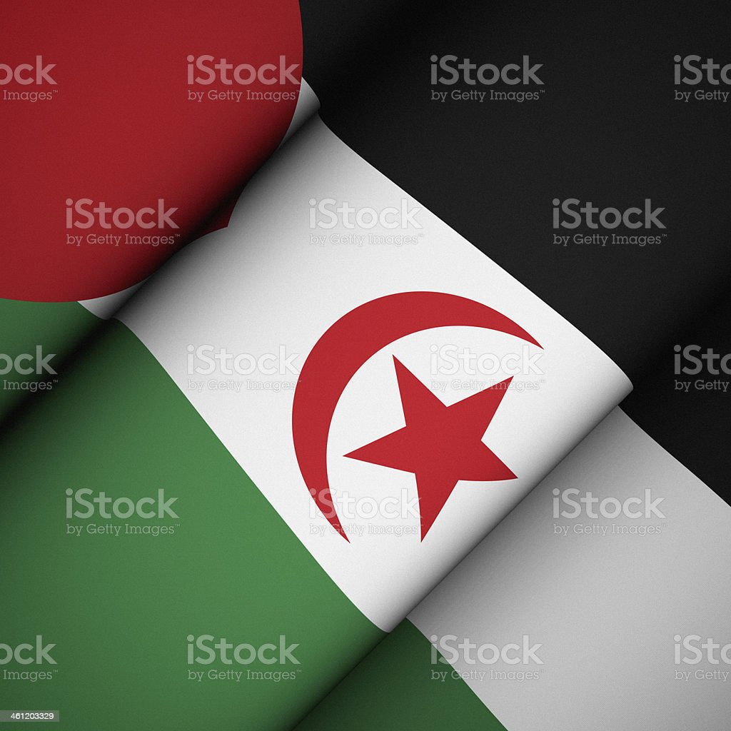 Iconic Flag of Sahrawi Arab Democratic Republic stock photo