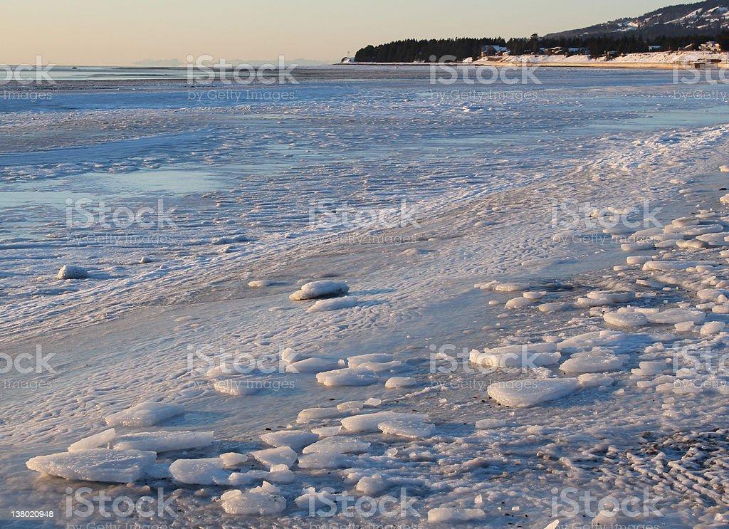Icy Alaskan beach royalty-free stock photo