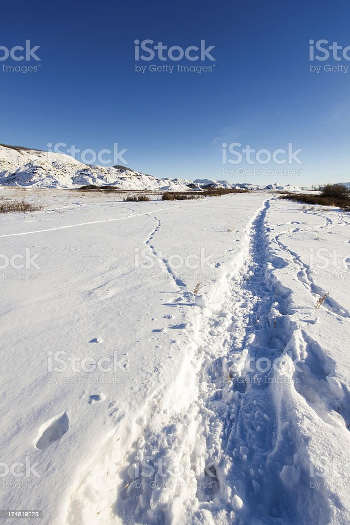 Icy Path royalty-free stock photo