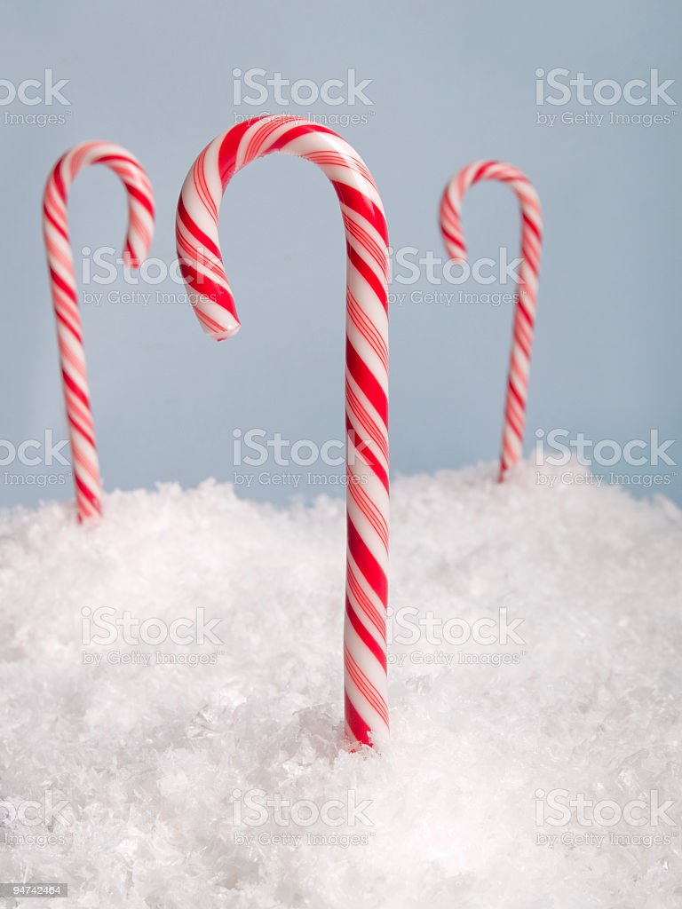 Icy Peppermint Canes royalty-free stock photo