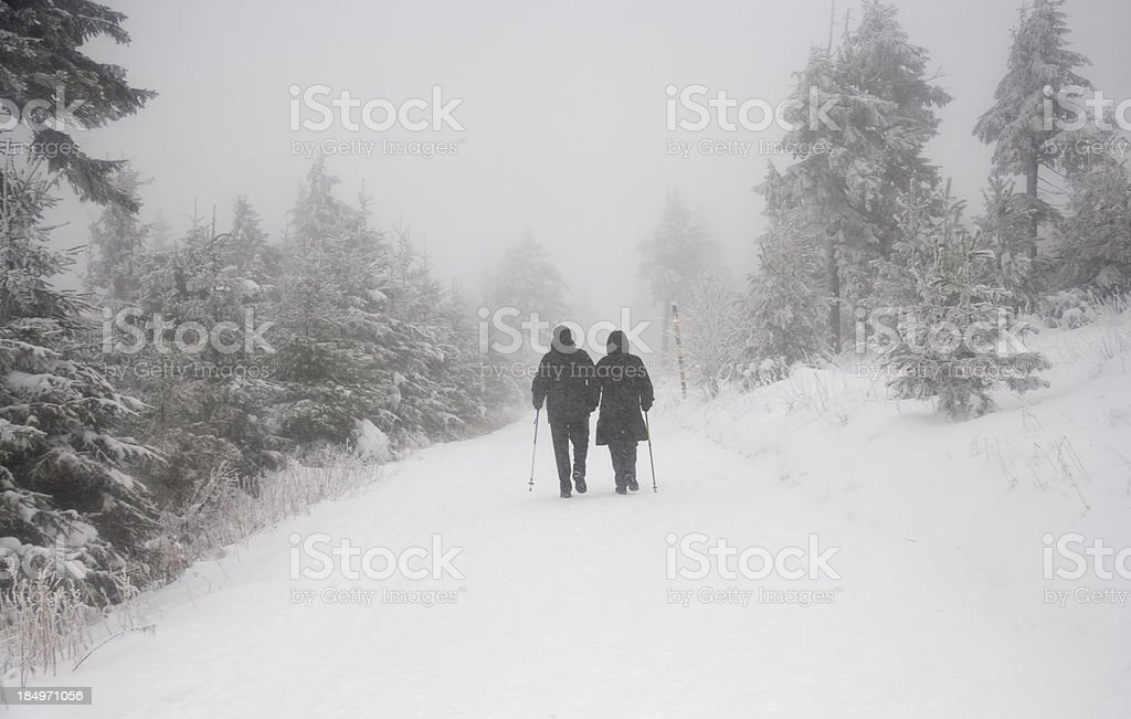 icy walk royalty-free stock photo