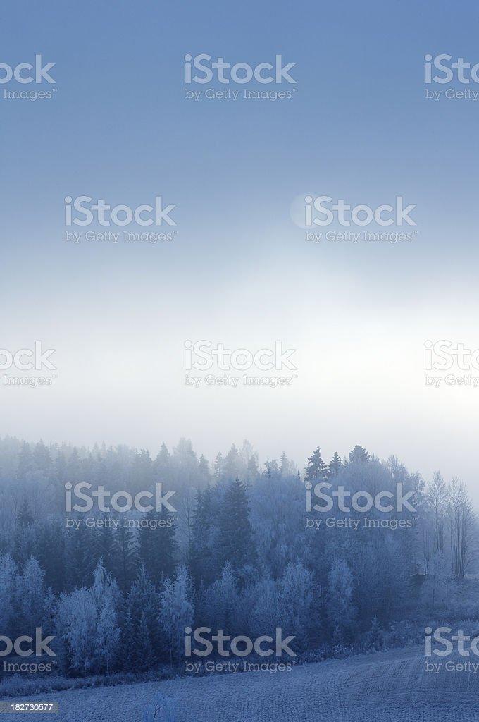 Icy winter scene royalty-free stock photo