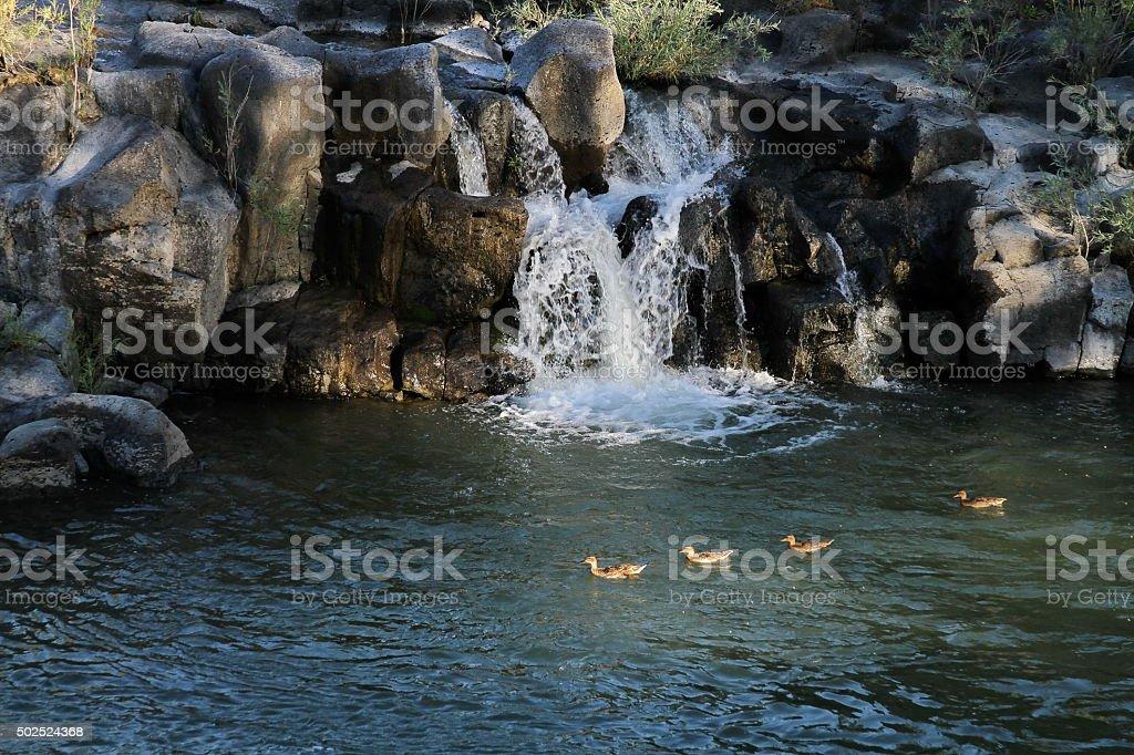 Idaho Falls stock photo