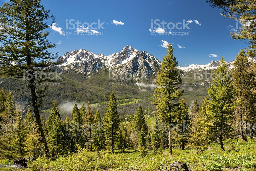 Idaho mountains forest and blue sky stock photo